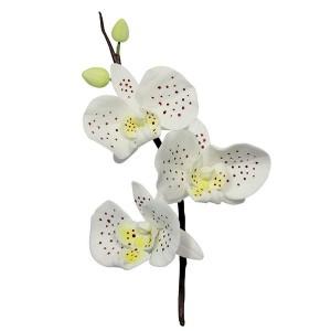 Moth Orchid Flower/Petal Cutter Set of 3
